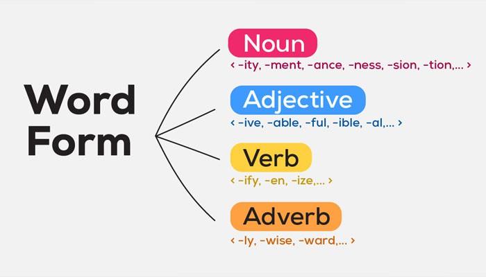 Word form là gì? Bật mí cách làm Word Form hiệu quả